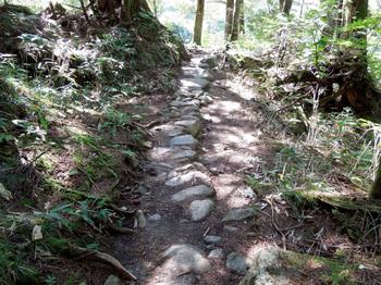 06_登山道.jpg