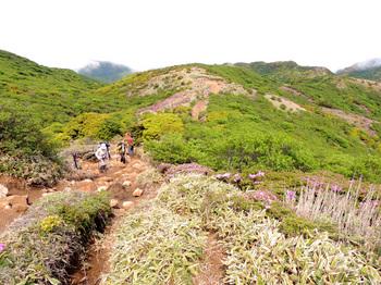 九重山登山道.jpg