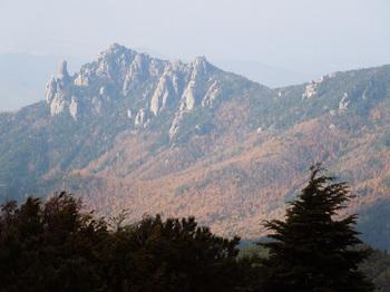 瑞牆山と麓の紅葉.jpg